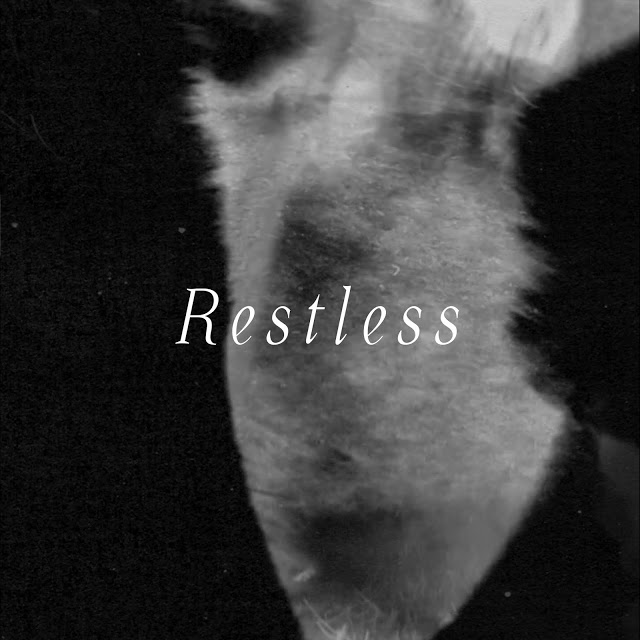 """Os FIRST estão inquietos no novo """"Restless"""""""
